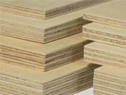 Ankara Plywood